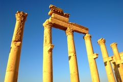 Site of Palmyra Stock Photography