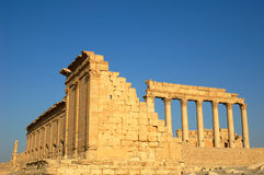 Site of Palmyra Syria Royalty Free Stock Image