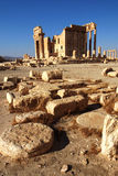 Site of Palmyra,Syria Royalty Free Stock Images