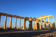 Site of Palmyra Syria Royalty Free Stock Photo
