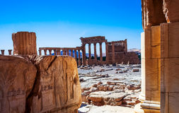 The site of Palmyra Stock Photos