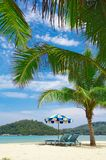 site tropical photographie stock
