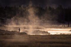 Siteseeing över sjön med gäss ångar vatten och guld- solsken Fotografering för Bildbyråer