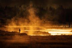 Siteseeing над озером с гусынями испаряется вода и золотая солнечность стоковое фото rf