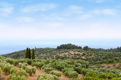 Sithonia Halkidiki Greece landscape Royalty Free Stock Image