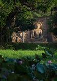 Siting Buddha Statue, Polonnaruwa, Sri Lanka. Ancient City of Polonnaruwa, seated Buddha in meditation at Gal Vihara Rock Temple (Gal Viharaya), UNESCO World Stock Images