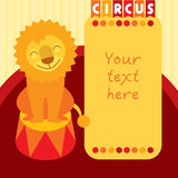 Siting smiling lion in circus. Place for text Royalty Free Stock Photography