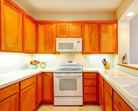 Sitio brillante simple de la cocina con las flores frescas Fotografía de archivo
