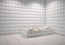 Sitio completado del hospital mental Imagen de archivo libre de regalías