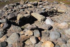 Sitio de la arqueología en las islas Canarias Foto de archivo libre de regalías