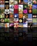 Sitio de los media Foto de archivo libre de regalías