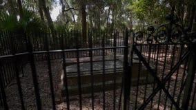 Sitio histórico de Wormsloe/Georgia/los E.E.U.U. almacen de metraje de vídeo
