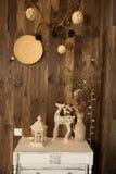 Sitio interior con un ciervo, lámpara Imágenes de archivo libres de regalías