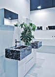 Sitio moderno del toilette Fotos de archivo