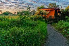 Sitio para acampar, delta de Okavango, Botswana imagen de archivo