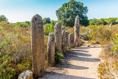 Sitio prehistórico olvidado en las colinas de Córcega - 1 Imagen de archivo libre de regalías