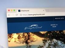 Sitio web de las líneas del galgo Fotos de archivo