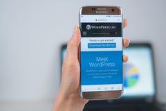 Sitio web de WordPress abierto en el m?vil imagenes de archivo