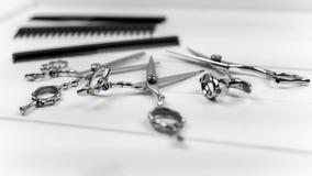 Sitio web del Groomer, del peluquero y del peinado e imagen de impresión de peines profesionales y de tijeras fijados Foto de archivo