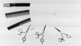 Sitio web del Groomer, del peluquero y del peinado e imagen de impresión de peines profesionales y de tijeras fijados Imagenes de archivo