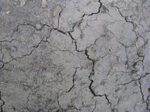 Sitio web Hay Grass Photo del fondo de la naturaleza de la suciedad de la tierra de la naturaleza Foto de archivo libre de regalías