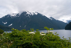 Sitka Bay Royalty Free Stock Images