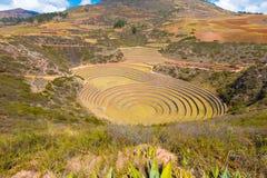 Sito archeologico della valle di Moray sacro di Cusco immagini stock libere da diritti