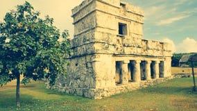 Sito archeologico di Tulum, movimento lento sullo scorrevole stock footage