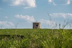 Sito dello stabilimento antico Fotografie Stock