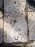 Sito di eredità dell'Unesco della città antica di Ephesus, Selcuk, Tur Immagini Stock
