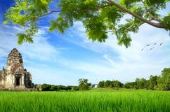 Sito storico sul prato verde immagine stock