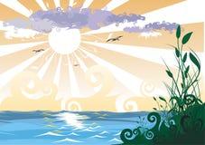 sitowie wybrzeża słońce royalty ilustracja