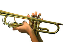 sitta fast trumpeten arkivbild