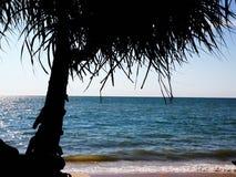 Sitta i stranden Royaltyfria Bilder