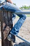 Sitta på ett staket royaltyfri fotografi