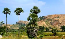 sittanavasal洞寺庙复合体岩石小山  免版税图库摄影