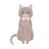 Sittande älsklings- katt för grå färger med den texturerade bärande flugan för päls Arkivfoto