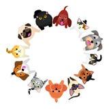 Sittande små hundkapplöpning och katter som upp ser cirkeln royaltyfri illustrationer