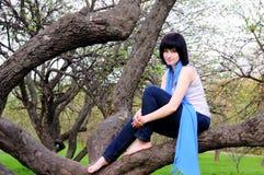 sittande tree för attraktiv flicka Royaltyfria Bilder