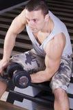 sittande weightlifting Royaltyfri Foto