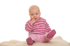 Sitting baby Stock Images
