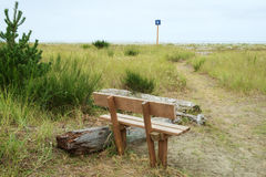 Sitting bench on beach trail. Wooden bench along trail number 4 leading to ocean through dunes and beach grass at Grayland Beach, Washington Royalty Free Stock Photos