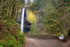 Sitting bench at a waterfall in Oregon Royalty Free Stock Photography