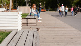 Sitting on benches in Gorky Park, Moscow Stock Photography