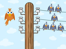 Sitting birds symbolize wireless technology. Vector illustration Stock Photography