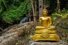 Sitting Buddha golden statue outside in the forest. Buddha statue in a Buddhist temple Wat in Thailand. Statue of seated, standing or lying Gautama Buddha stock photography