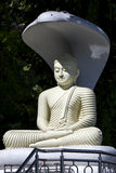 A sitting Buddha statue with a cobra umbrella located on a hill above Kandy in Sri Lanka. Royalty Free Stock Photos