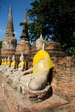 Sitting Buddha statue in Wat old Ayutthaya , Thailand Royalty Free Stock Photo