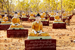 Sitting Buddha statues beneath a Bodhi tree in Monywa Royalty Free Stock Images