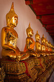 Sitting Buddha statues, Thailand royalty free stock photo